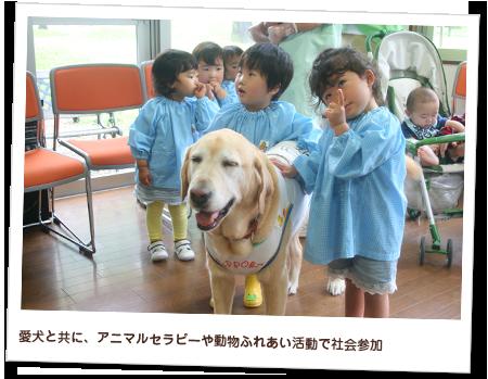愛犬と共に、アニマルセラピーや動物ふれあい活動で社会参加