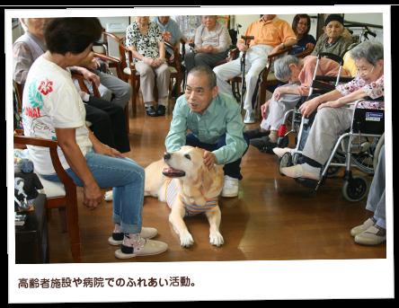 高齢者施設や病院でのふれあい活動。